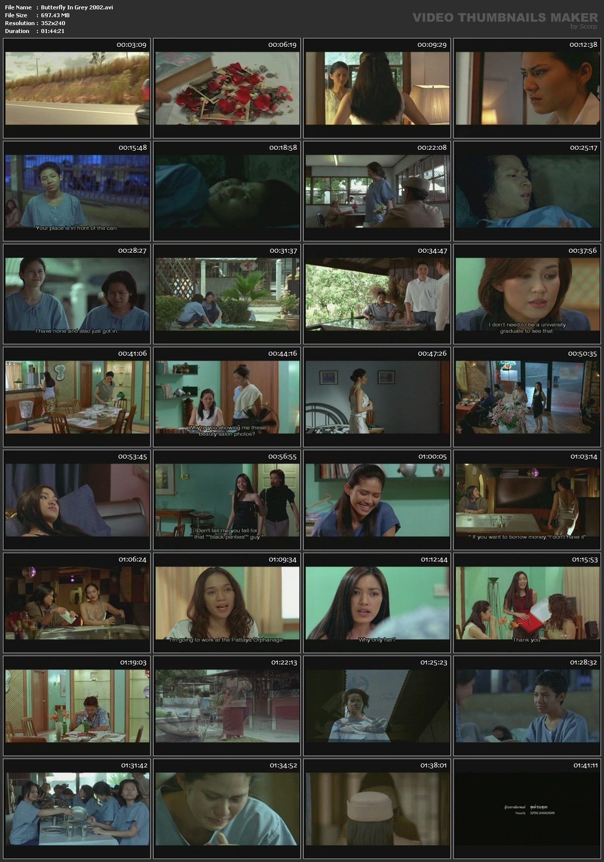 Butterfly In Grey 2002 Download Movie