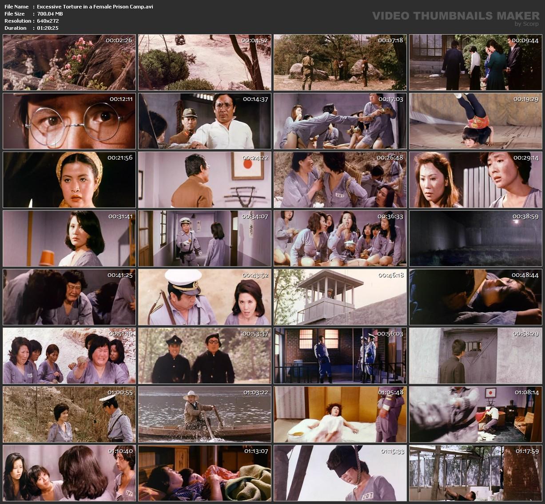 Da Nu Ji Zhong Ying  Excessive Torture In A Female Prison -2856