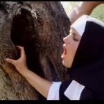Barmherzige Nonnen movie