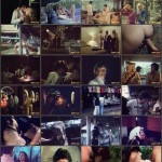 An Erotic Journal of a Lady from Thailand movie