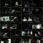 Cruelty: Black Rose Torture movie