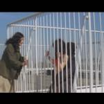 Zoom In: Rape Apartments movie