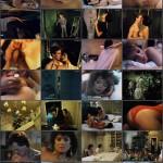 Taboo American Style 3 movie