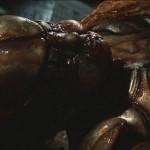 Demon Seed movie
