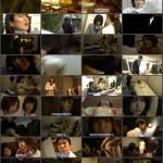 Missing 44 movie