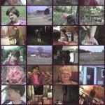 Splatter Farm movie