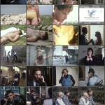 The Girl movie