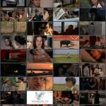 Friends movie