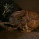 Desecration movie