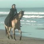 Cynara Poetry in Motion movie