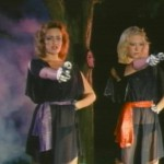 The Revenge of the Teenage Vixens from Outer Space movie