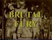Brutal Fury 1993
