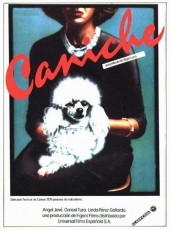 Caniche AKA Poodle 1979