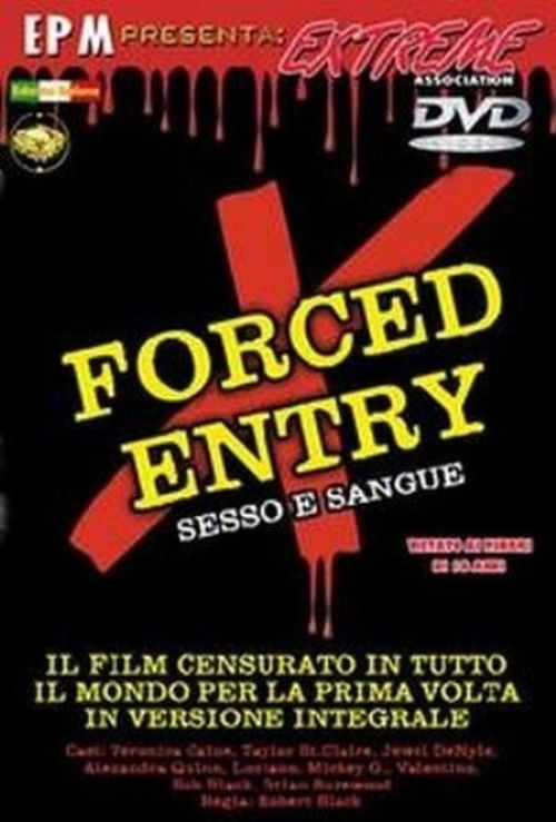Forced Entry  movie