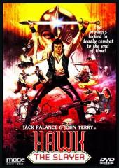 Hawk the Slayer 1980