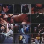 The Serial Rape-Murderer movie