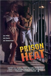 Prison Heat 1993