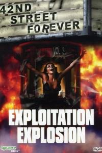 42nd Street Forever, Volume 3: Exploitation Explosion