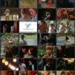 The Summer I Turned 15 movie