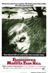 Frankenstein Monster From Hell