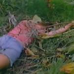 Contamination .7 movie