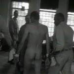 Titicut Follies movie