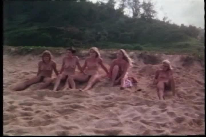 surrender in paradise 1984