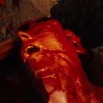 The German Chainsaw Massacre movie