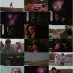 Marcy movie