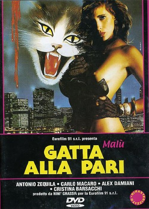 Gatta alla pari movie