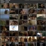 Perfect Love movie