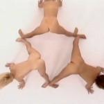 Totally Nude Aerobics movie