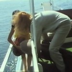 The Enigma of the Yacht movie