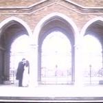 Damned in Venice movie