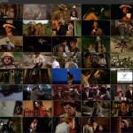 True Story of Eskimo Nell movie