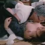 Nippon no Waisetsu movie