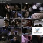 Cyberella: Forbidden Passions movie
