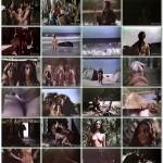 Ninfetas do Sexo Selvagem movie