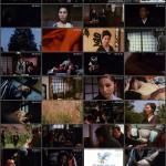 Oryu Joen: Shibari Hada movie