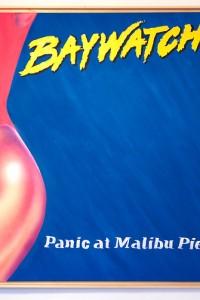 Baywatch Panic at Malibu Pier