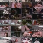 The Suckers movie