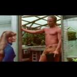 The Gardener movie