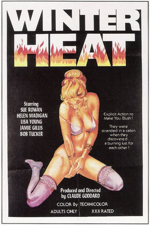 Winter Heat movie