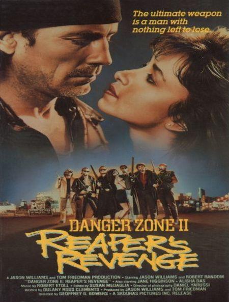 Danger Zone II movie