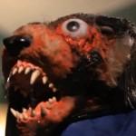 Bloodmarsh Krackoon movie