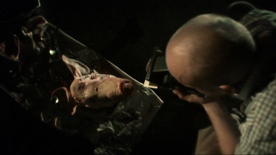 Debris Documentar movie
