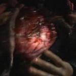Cryptic Plasm movie