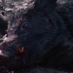 Pig Hunt movie