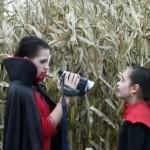 The Maize: The Movie movie