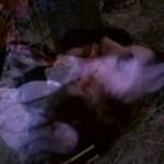 The Long Island Cannibal Massacre movie